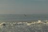 vn-2013-01-12-dsc_0009
