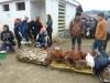 vn-2012-12-23-p1040402